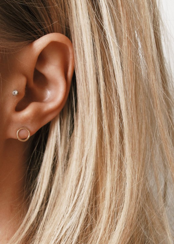 Wild Fawn Solid Circle Studs gold